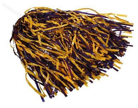 PURPLE AND GOLD POM POM