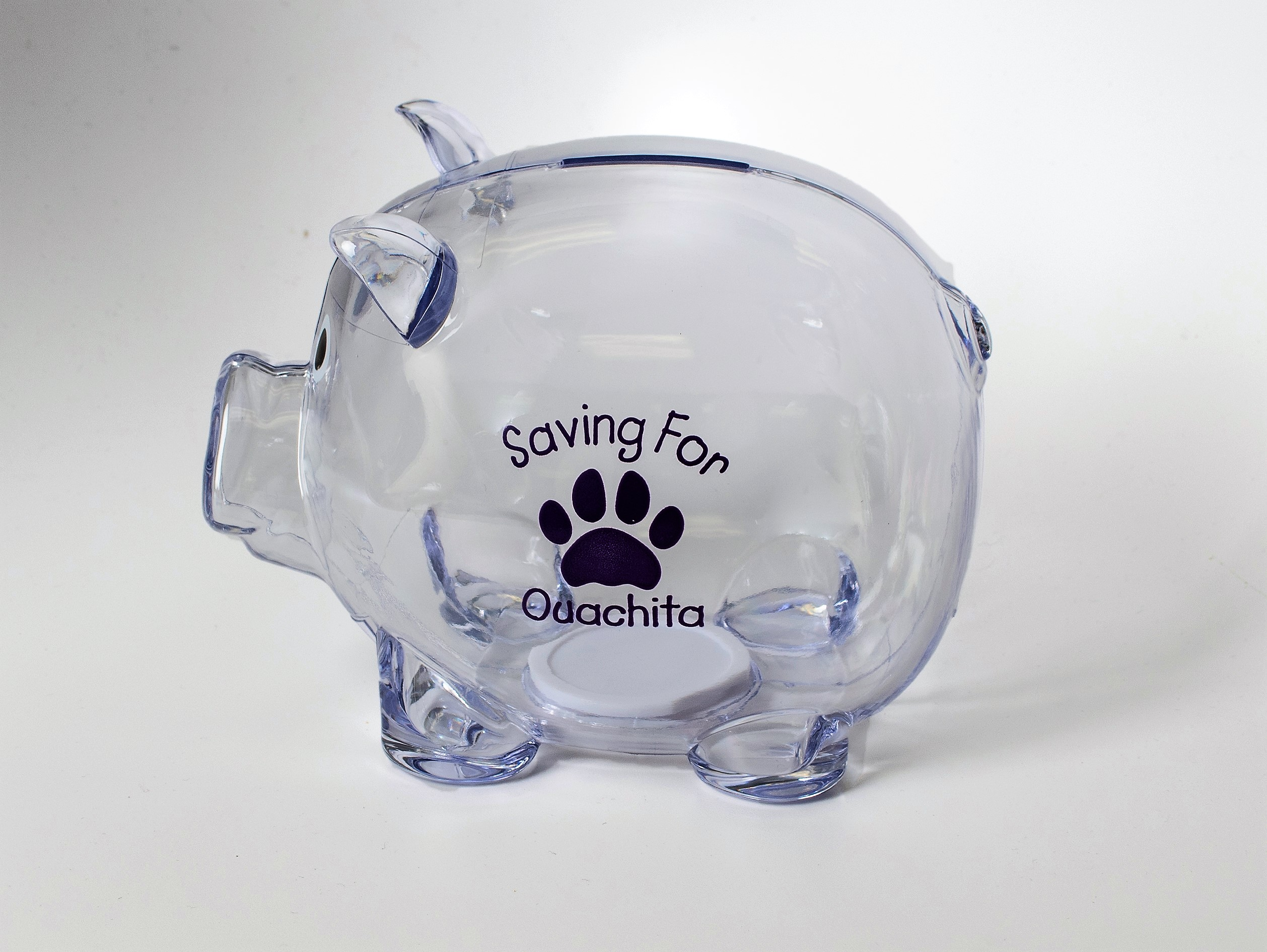SAVING FOR OUACHITA PIGGY BANK