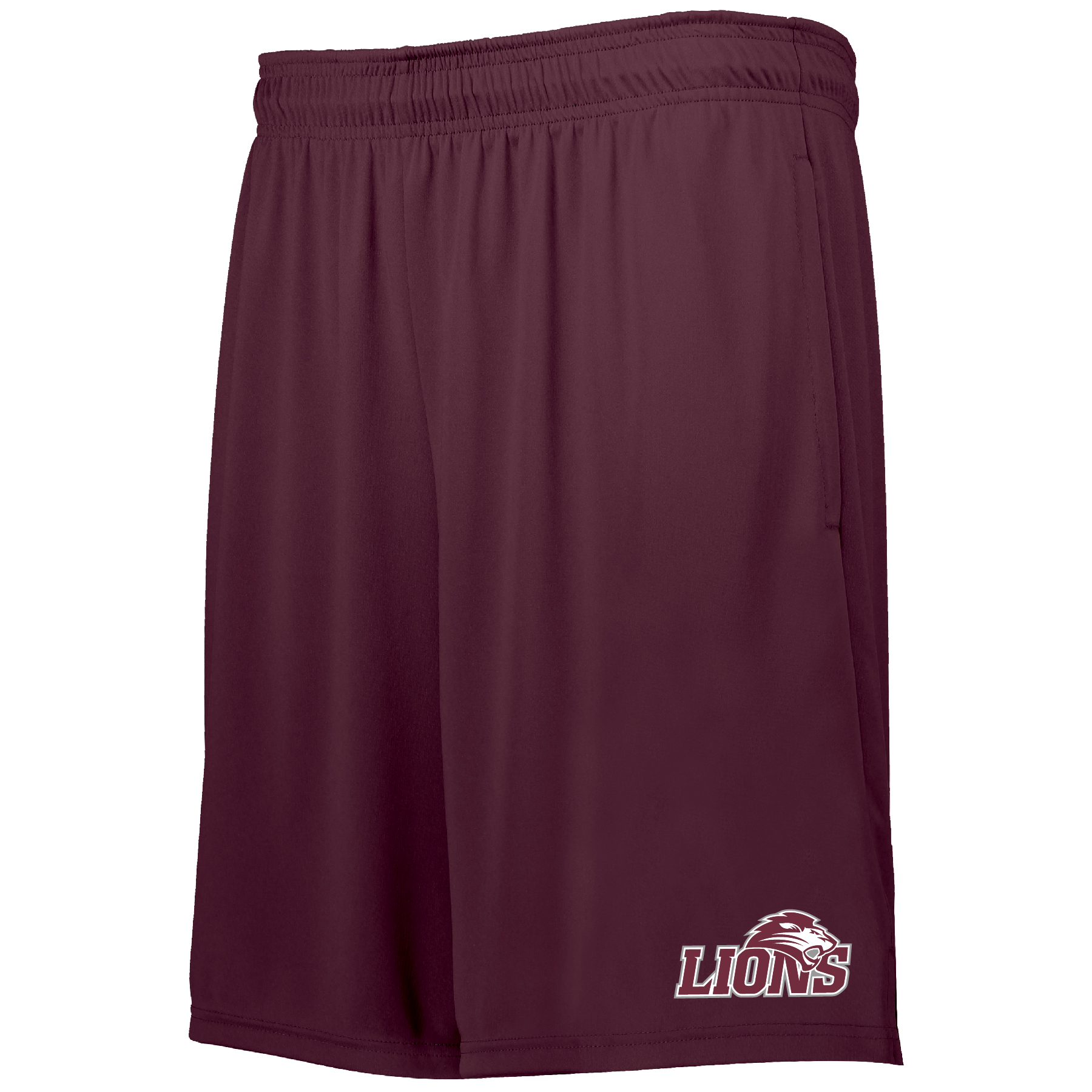 Hollway Whisk 2.0 FHU Shorts