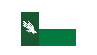 NTX EAGLE FLAG MAGNET