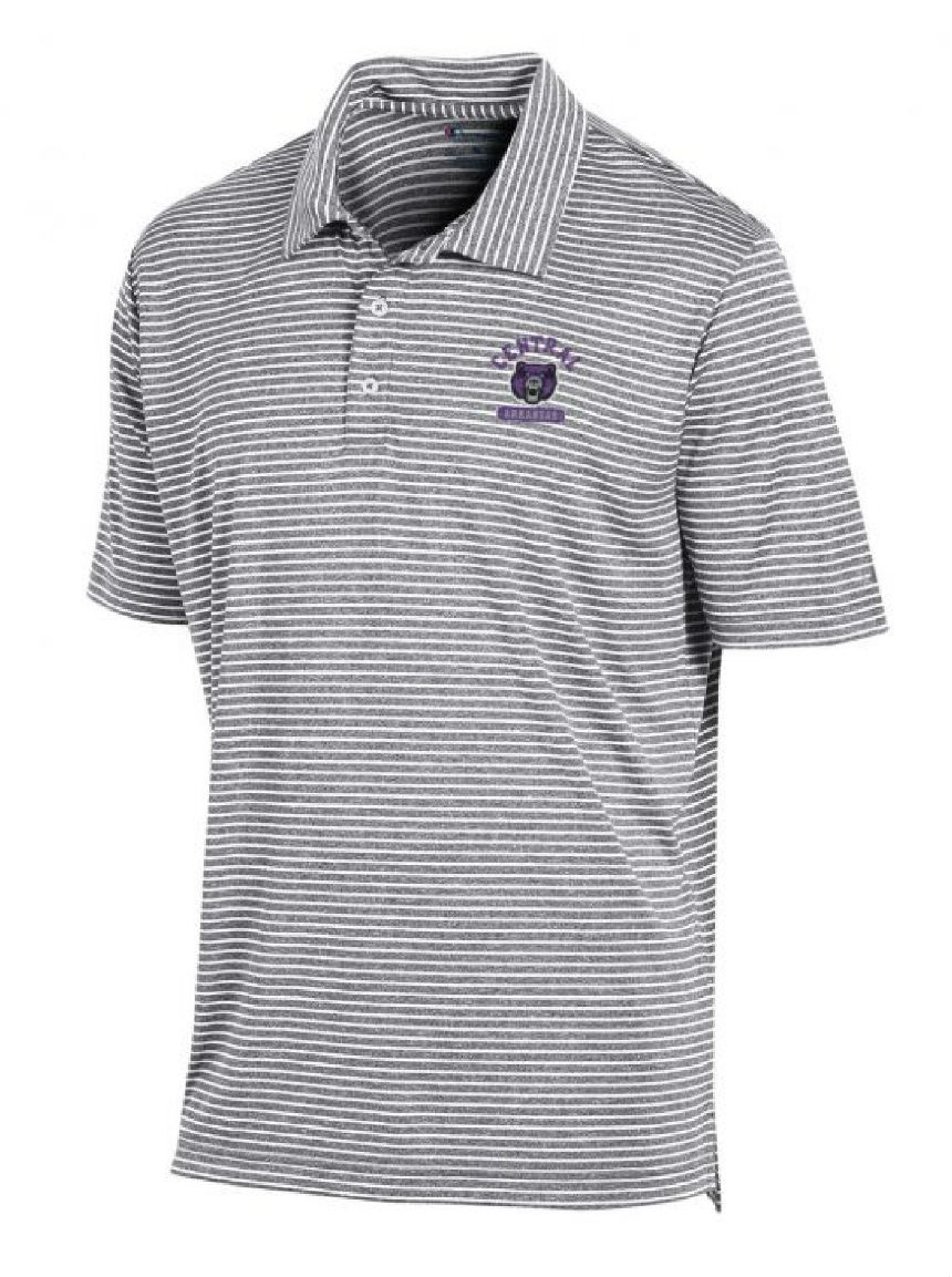 Stadium Stripe Polo