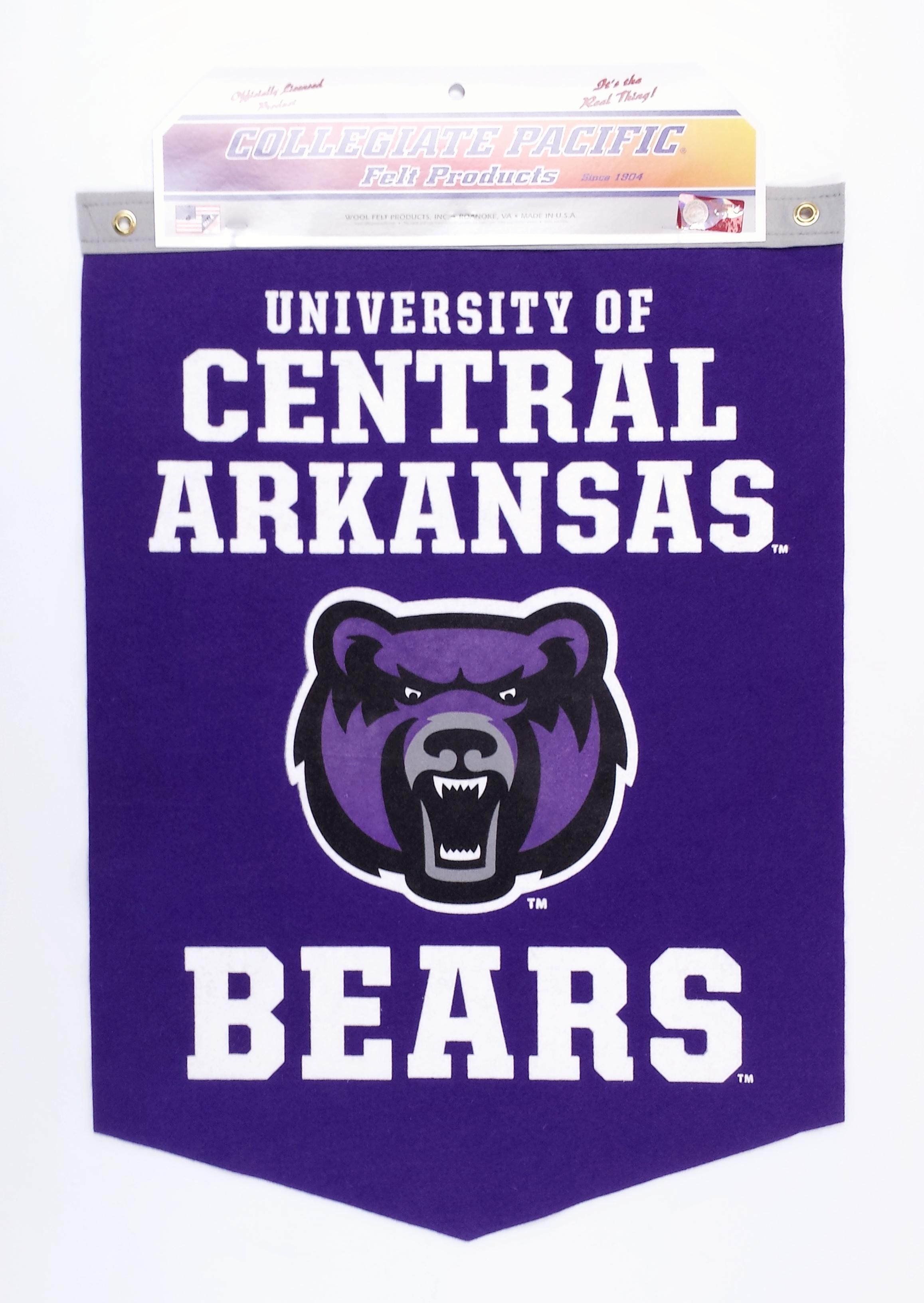UCA Vertical Banner