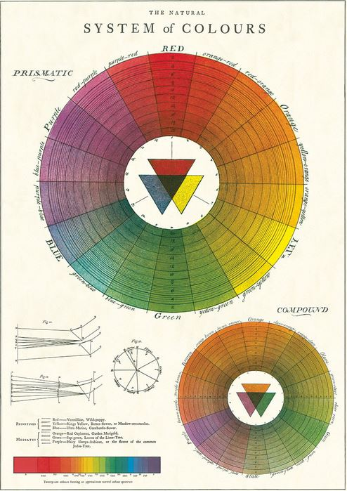 Decorative Color Wheel Poster