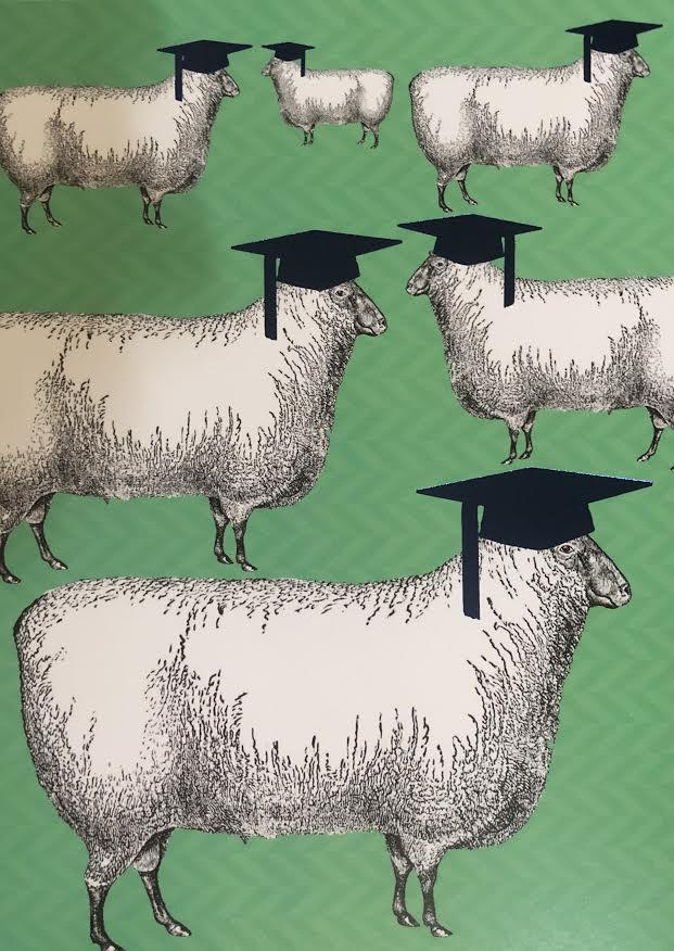 Graduation Greeting Card Sheep in Cap