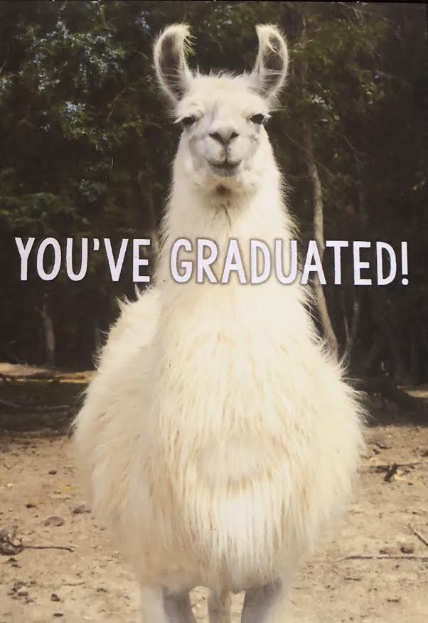 Llama You've Graduated! Greeting Card
