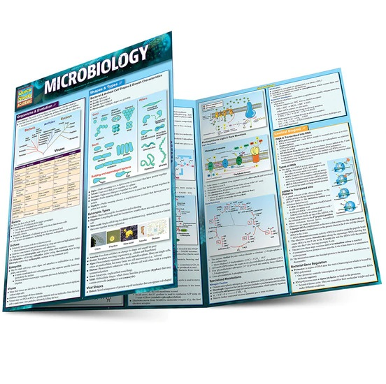 QuickStudy | Microbiology Laminated Study Guide