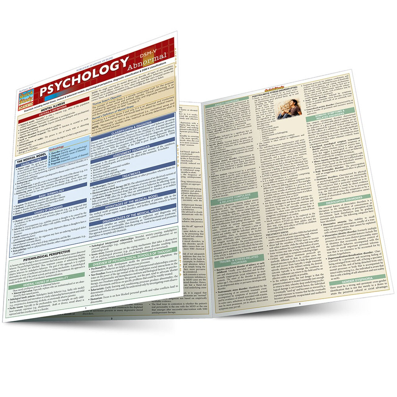 QuickStudy | Psychology: Abnormal Laminated Study Guide