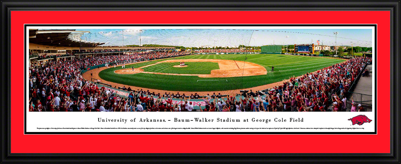 UofA Sports Deluxe Frame Panorama