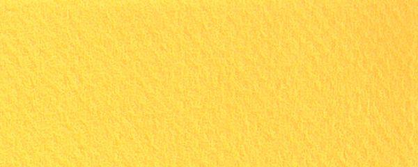 Canson Mi-Teintes Pastel Sheets 19 x 25