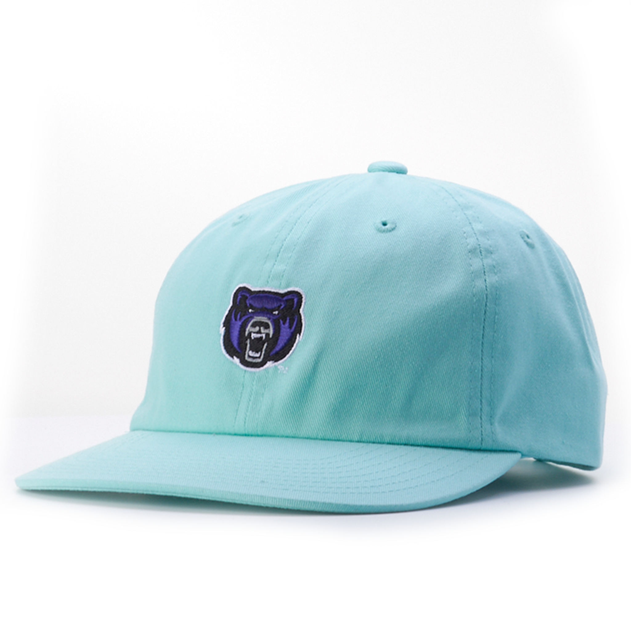Bear Colorful Cap