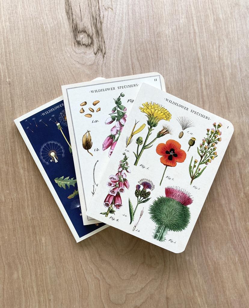 Vintage Mini Notebooks, Wildflowers