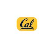Cal Bears Gold Lapel Pin