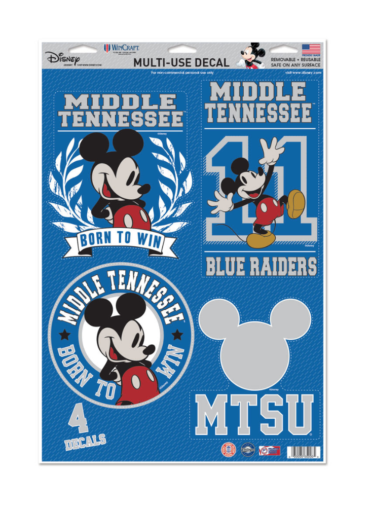Middle Tennessee Disney Multi-use Sticker Sheet