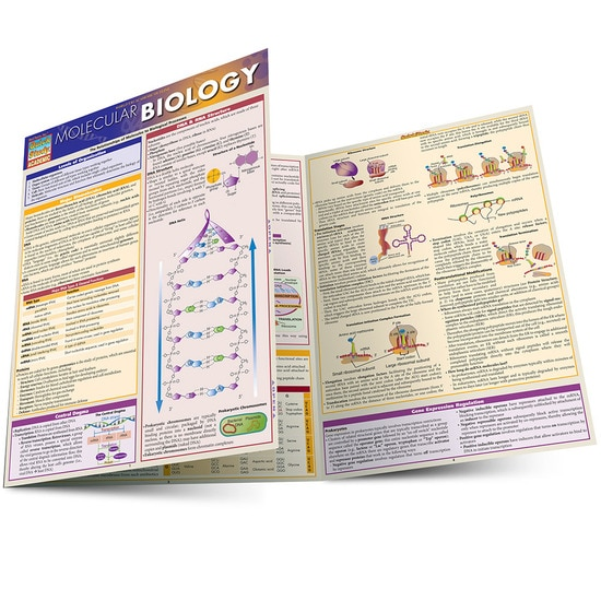 Molecular Biology QuickStudy Laminated Study Guide