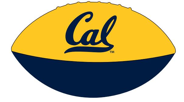 Cal Bears Mini Soft Large Football
