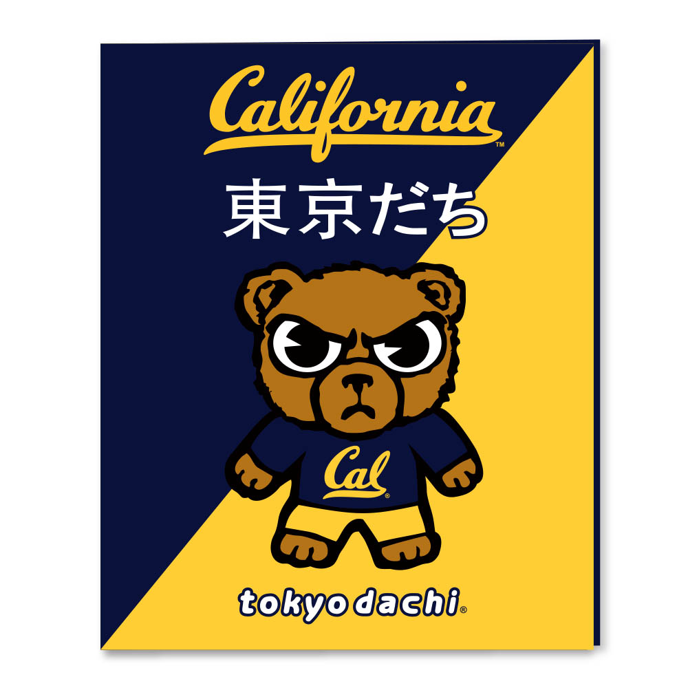 Cal Bears Laminated Folder Tokyodachi