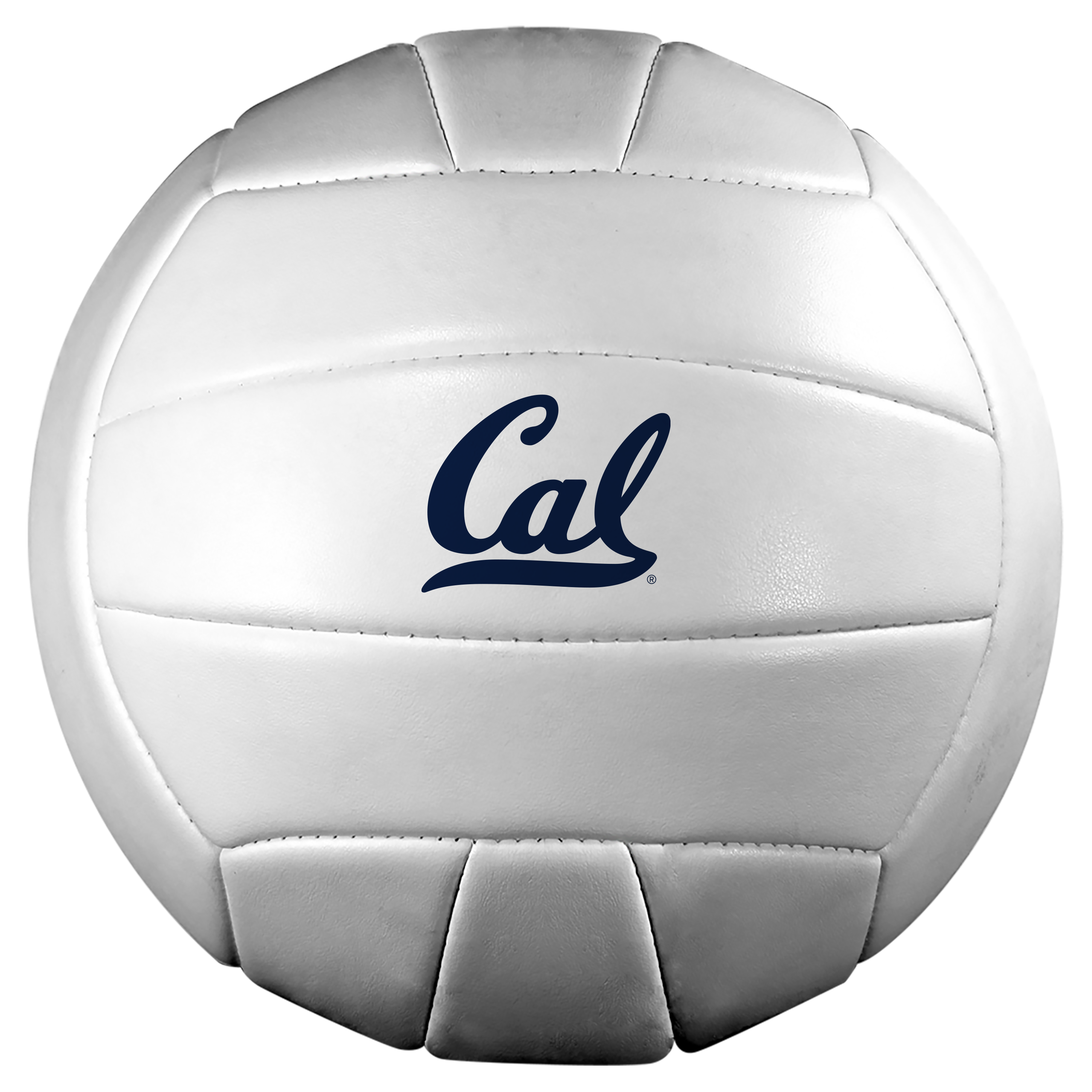 Baden Deluxe Synthetic Volleyball Official Size Cal