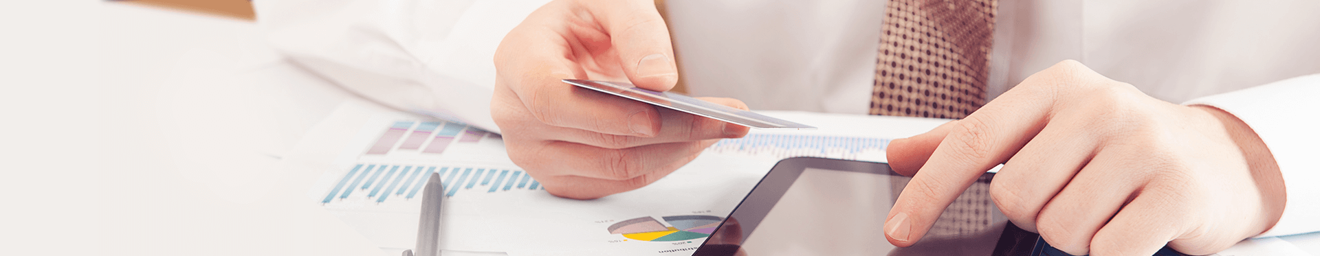 Pricing Disclosure Secured Credit Cards