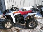1995 Yamaha Wolverine 350 with Snow plow Evansville MN