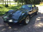 1976 Corvette Stingray - $10300 Alexandria, MN Alexandria MN
