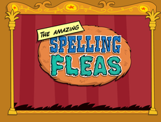 The amazing spelling fleas