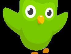 Owl happy 2x