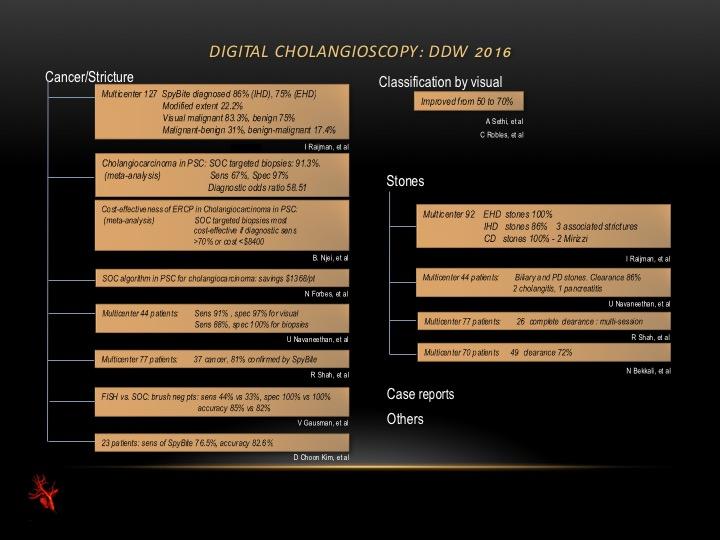 Digital Cholangioscopy as an Essential Part of ERCP