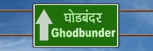 5 Reasons Why Buying Property On Ghodbunder Road, Thane Makes Sense