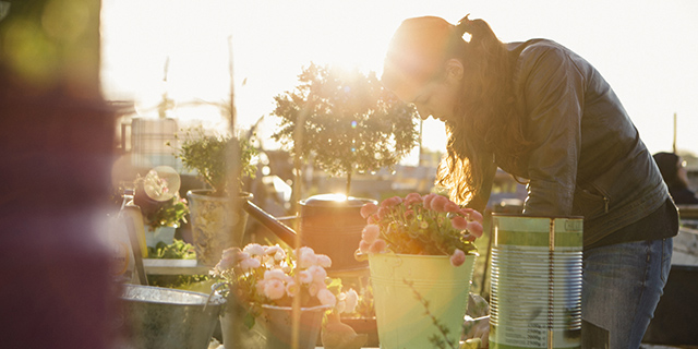 Urban farming is an extension of traditional kitchen gardens but on a smaller scale and in a eco-friendly way.