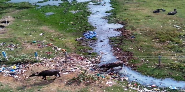Water Pollution, property