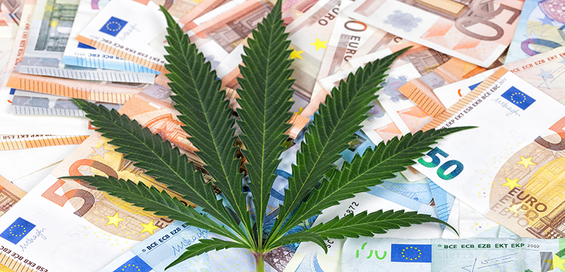 Banking Cannabis in Today's Environment