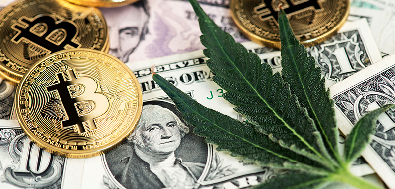 How to Bank the Cannabis Industry