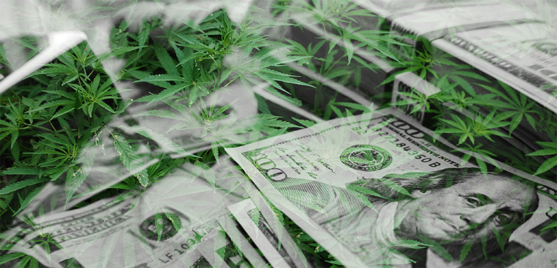 Cannabis Banking: What You Need to Know