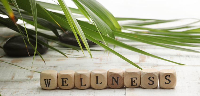 Wellness Program Update: DOL and IRS Audits and Enforcement Activity, Removal of EEOC Regulations, and Continuing Compliance Challenges