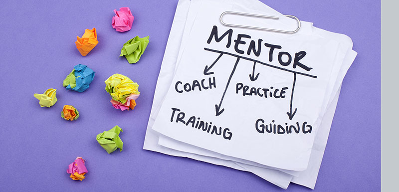 How to Establish and Sustain a Faculty Mentoring Program