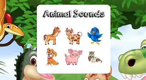 Animal Sounds