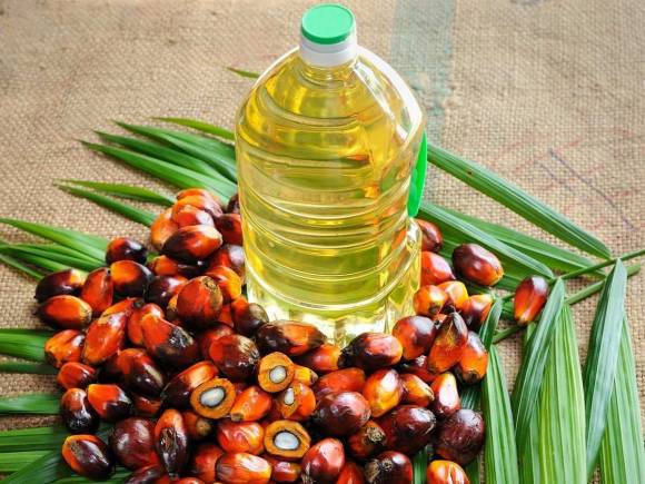 India slashes tax on palm oil imports from ASEAN countries