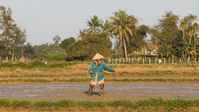 Meet the 15 startups competing for SustainableAg Asia Challenge by Rabobank