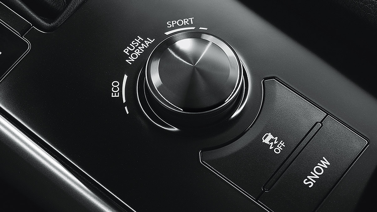 2019 Lexus IS Driving Modes