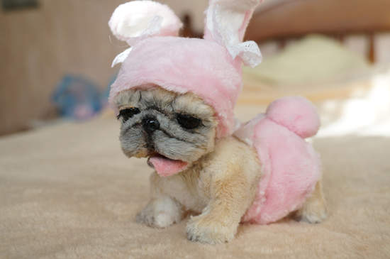 The Baby French Bulldog By Tsybina Natali Bear Pile