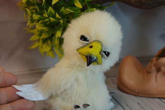 Baby Eagle Eyes Open And By Irina Fedi Bear Pile