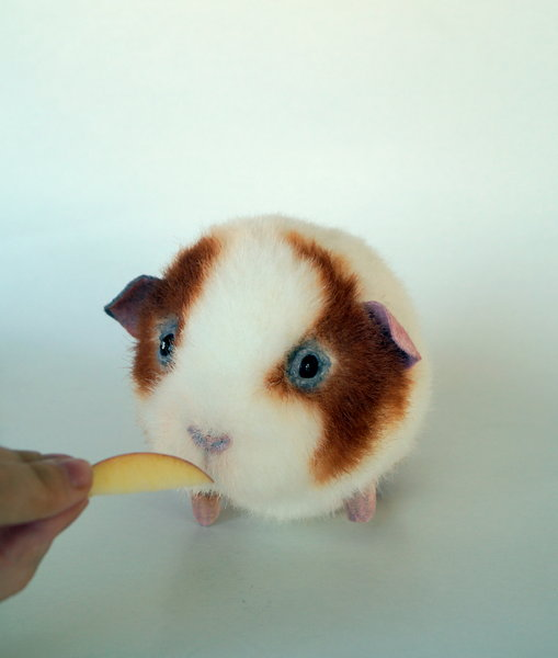 Guinea Pig White&red By Teddy Trendy