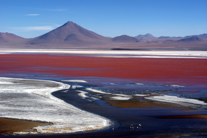 astonishing red beauty in bolivia now beautifulnow