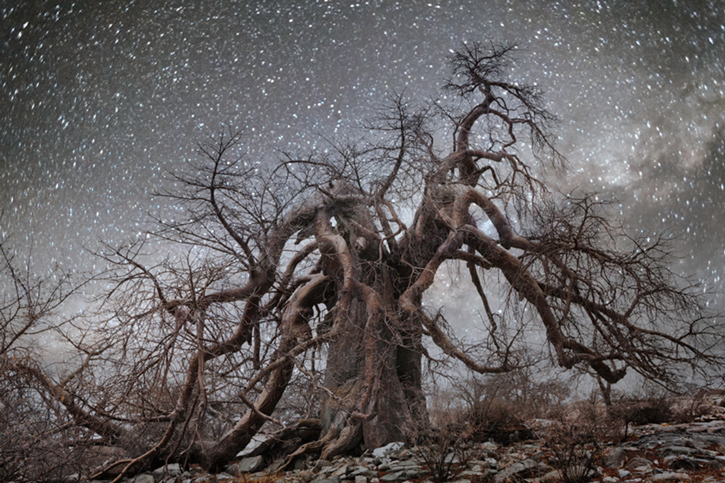 Hydra Moon: Photo By Beth Moon