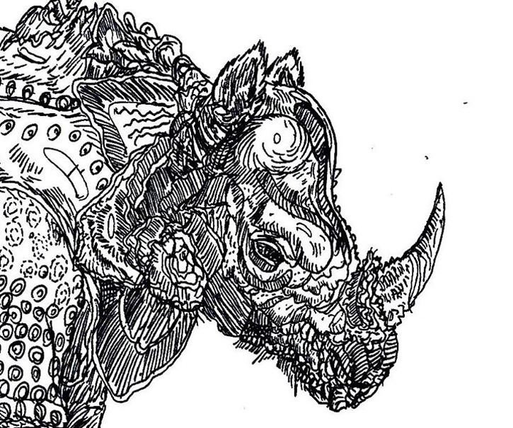 Detailed Line Drawings Of Animals : Dusan krtolica drawing g
