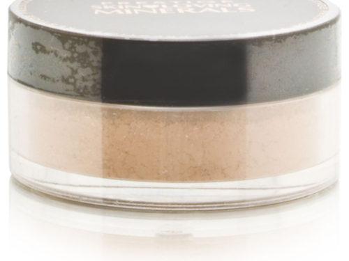 Prestige Skin Loving Minerals MultiTask 3-in-1 Powder Concealer