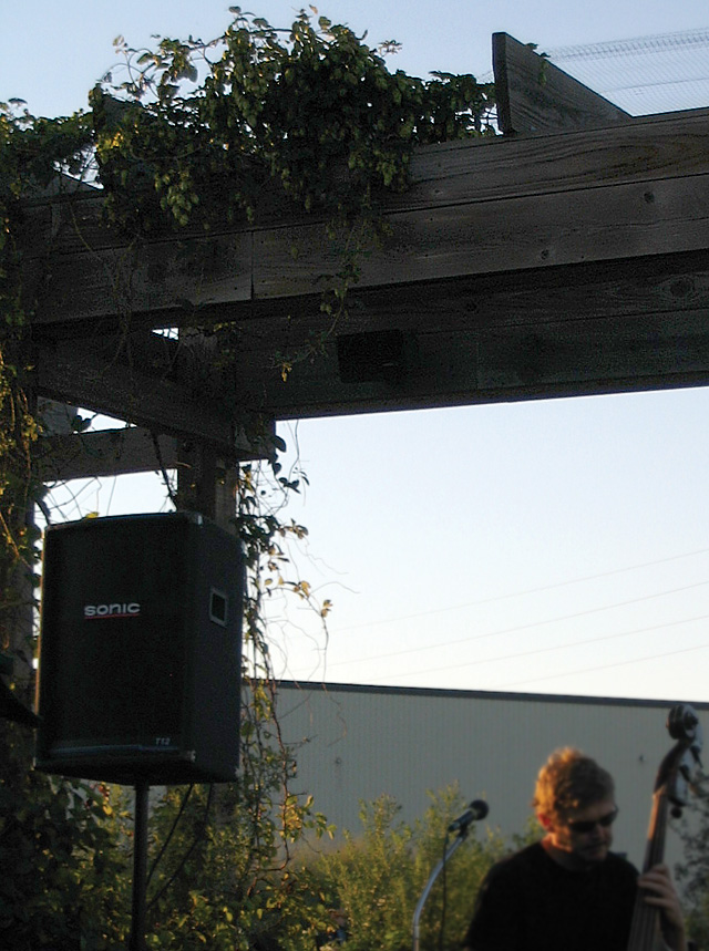 Beer Garden Trellis With Hops Growing