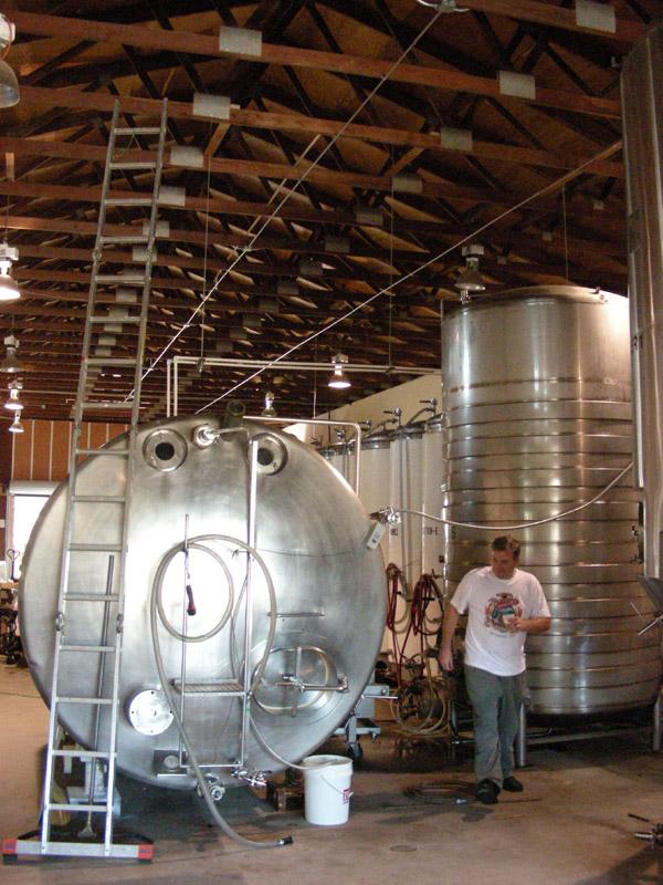 Sample from the fermenter