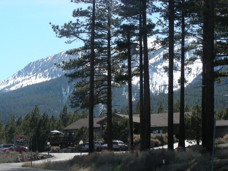 From Mt Rose highway