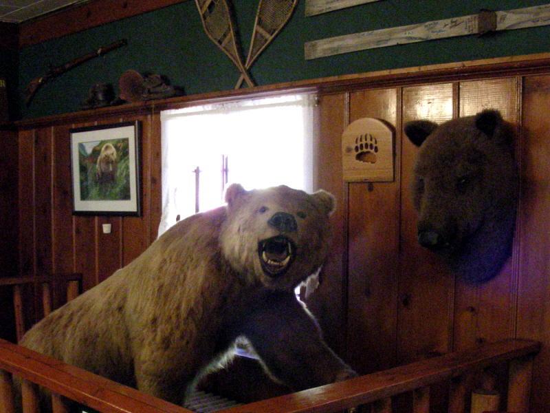 Feeling Bearish?